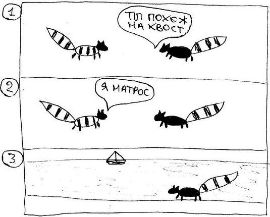racoon061
