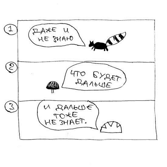 racoon074